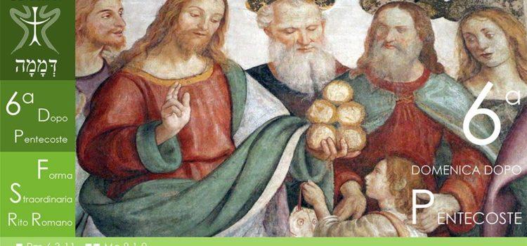 21 Luglio '19 – VI Domenica dopo Pentecoste
